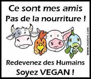 vegan_amis01